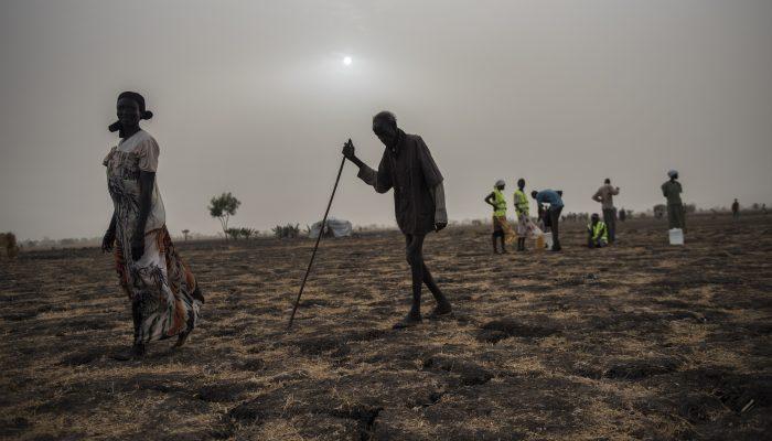 Direitos humanos e ambiente