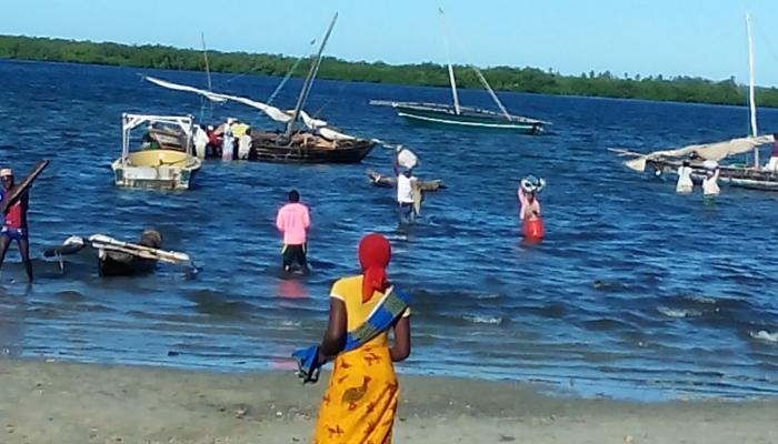 Autoridades em Moçambique têm de travar brutal vaga de chacinas por grupo armado
