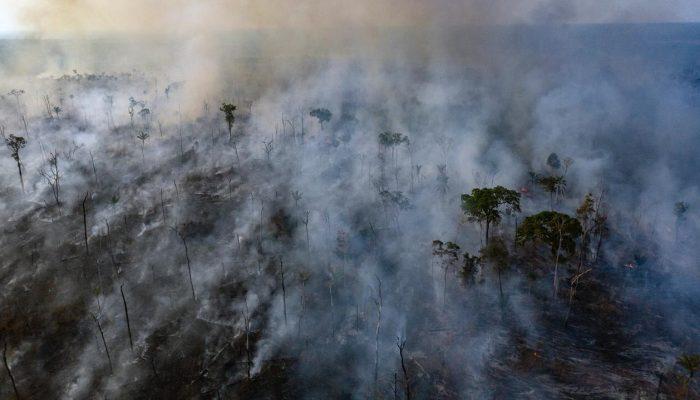 Queremos a proteção dos direitos dos povos indígenas e da Amazónia