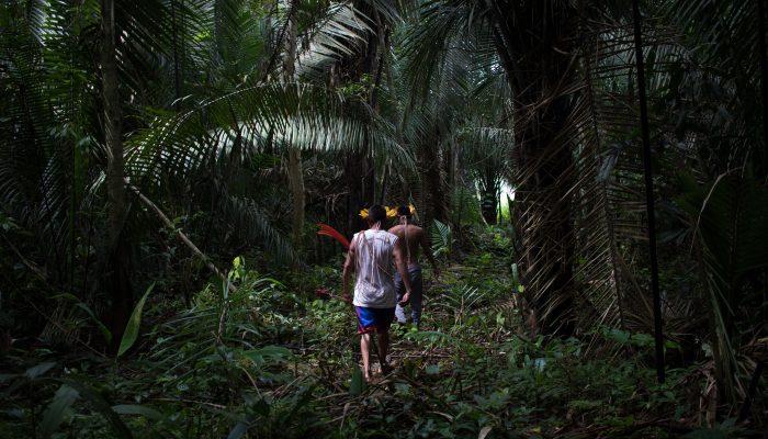 Ocupação de terras e COVID-19: As duas ameaças aos povos indígenas do Brasil