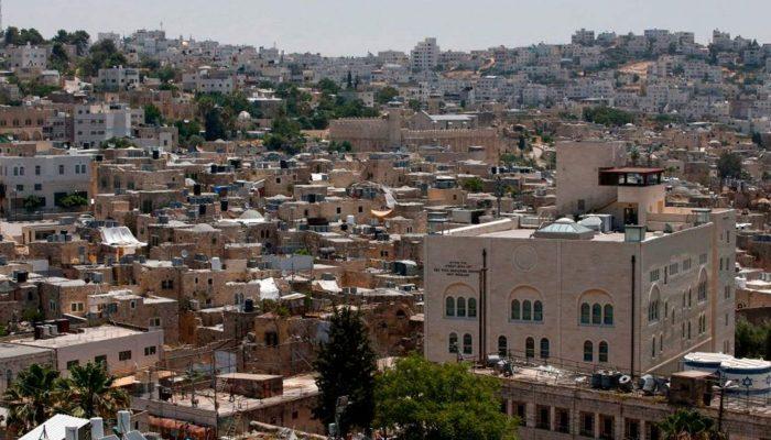 """Israel/TPO: Plano ilegal de anexação promove """"lei da selva"""" e deve ser abandonado"""