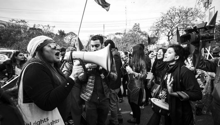 Câmara Municipal de Lisboa: partilha de dados de ativistas é ilegal